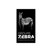 Groupe-ZEBRA